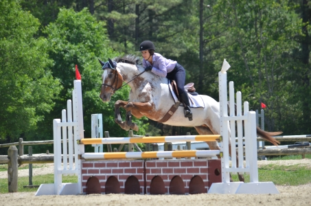Champagne N Candlelite - 10 year old ApHC mare, High/Child Adult Jumper